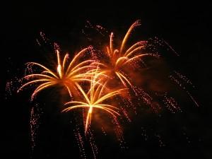 Firework tips from mobile dog groomer Norfolk